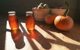 Тыква с медом для печени: рецепты для чистки
