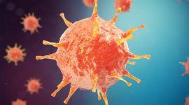 Острый гепатит: диагностика, как лечить, диета