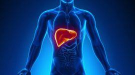 Холестатический гепатит: острый и хронический, код МКБ-10