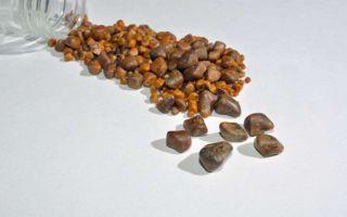 Камни в желчном пузыре: лечение народными средствами