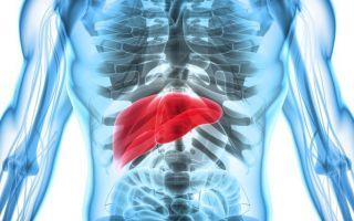 Некроз печени: отмирание гепатоцитов, как лечить