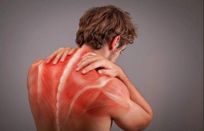 Симптомы гепатита Е