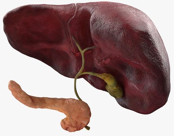 Диффузное изменение печени и поджелудочной железы